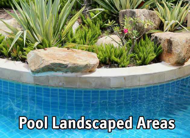 Swimming pool custom landscaping ideas.
